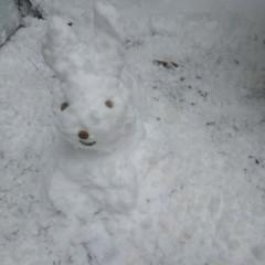 nochmal Rattilinchen-Hoppilina-Mix-Schneehäsin